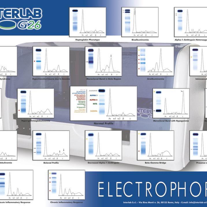 poster_electrophoresis_g26